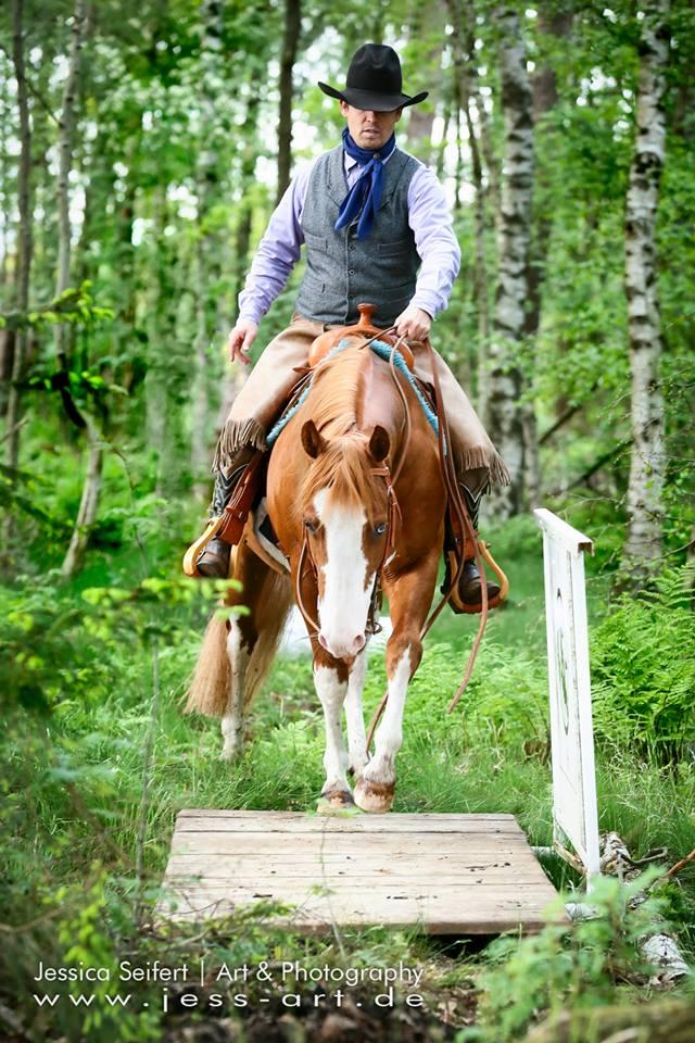 Stock Horse Versatility Soltau 2013