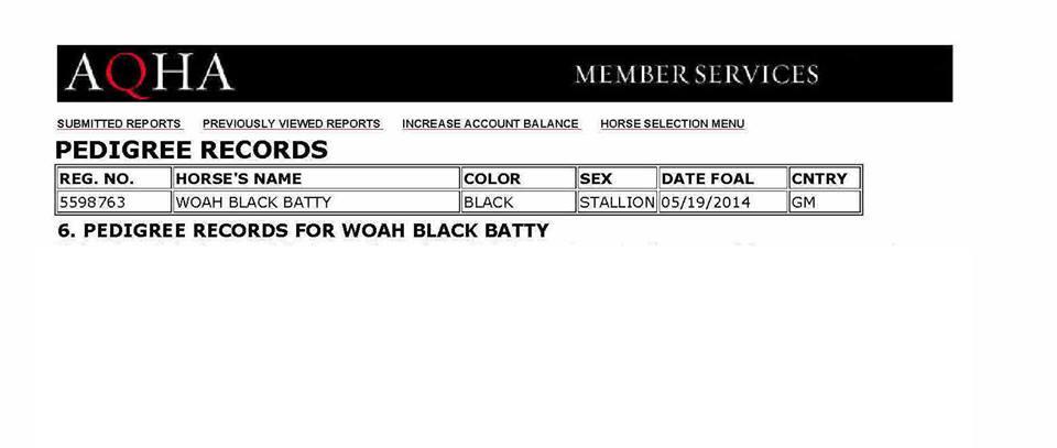 Black Batty